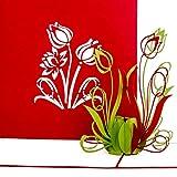 """Pop Up Karte """"Tulpen in Rot & Grün"""" 3D Geburtstagskarte - Tulpenkarte als kleines Geschenk, Gutschein oder Geschenkverpackung – zum Geburtstag oder als Dankeskarten & Dankeschön Geschenk"""
