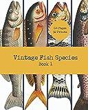 Vintage Fish Species: Book 1: General Natural History of Fish Illustrations: 32 Unframed 8x10 Fish Art Prints For Wall Art Framing, Junk Journaling, ... Design (Vintage Wall Art Prints for Framing)