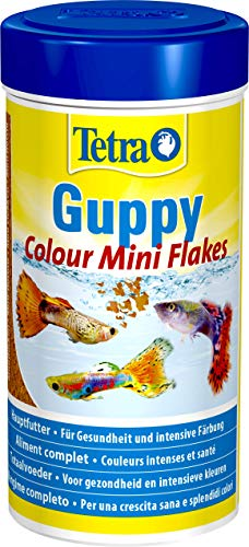 Tetra Guppy Colour, Mangime in mini fiocchi per Pesci Tropicali, 250 ml