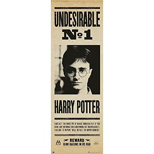 Grupo Erik Editores Poster Puerta Harry Potter Undesirable Nº1