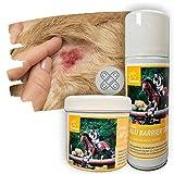 EMMA Ungüento de Zinc más Spray de Aluminio para Caballos y Perros I Set económico I Pasta de Zinc para irritación de la Piel picor Eczema I Cuidado de heridas en Spray 2 * 250ml