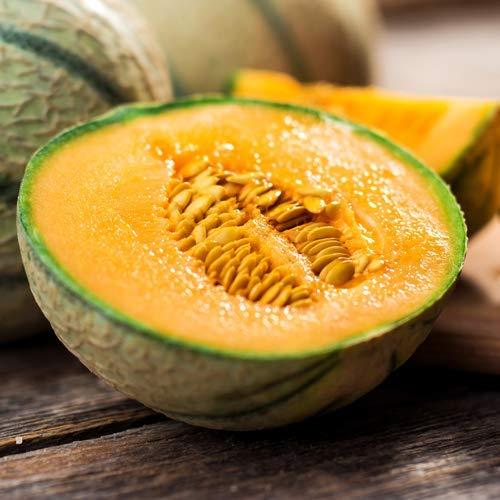 Honigmelone 5/10/25 x Samen aus Portugal 100% Natursamen super süß