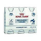 Royal Canin Veterinary Diet Recovery Liquid, integratore liquido per cani, 3 x 200 ml