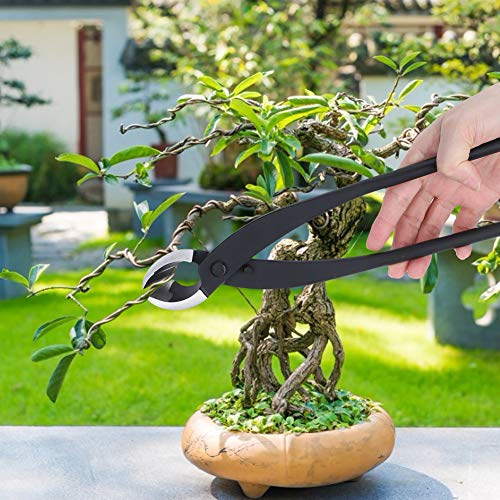 【Spécial Nouvel An 2021】de Fin d'année Coupe en Pot de Branche, sécateur d'arbre de Jardin 275mm Ciseaux Multifonctionnel élagage bonsaï Outils de modélisation de Coupe pour Les Amateurs de bonsaï déb