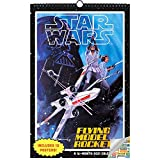 Classic Star Wars Calendar 2021 Bundle - Deluxe 2021 Star Wars Sage Oversized - 11' x 17' Calendar with Over 100 Calendar Stickers (13 Star Wars Posters, Office Supplies)