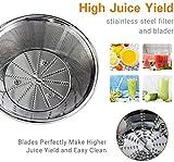 Entsafter, Volsteel Zentrifugaler Entsafter mit ProBlend Technologie, Klinge aus rostfreiem Stahl, BPA Frei, und 2 Geschwindikeitsstufen für Gemüse, Obst, Sellerie, Zwiebeln, und Radieschen
