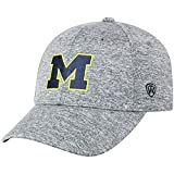 Top of the World Michigan Wolverines Men's Hat Icon, Charcoal, Adjustable
