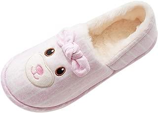 Comfort Warm Winter Slippers,QueenMM Indoor Home Mute Cute Soft Plush Fuzzy Soft Ball Women Interior Boots