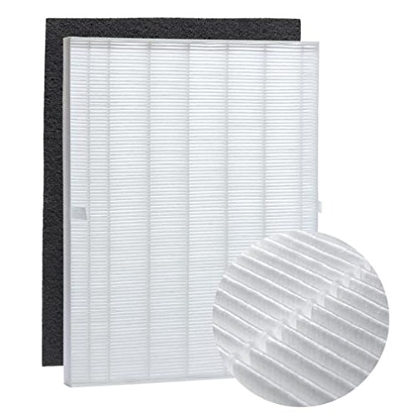 Nispira True HEPA Filter Replacement and Carbon Pre Filter Compatible with Winix 115115 Size 21. Fits Model WAC5300, WAC5500, WAC6300, 5000, 5000b, 5300, 5500