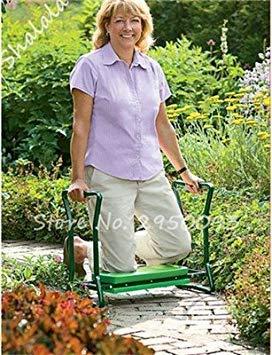 Potseed Exotische Neue Ankunfts-Samen EIN Beutel 200 Stück im Freien Staudenphlox Samen Kletterpflanze Hoch Keimung DIY Gartendeko