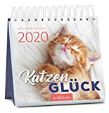 Miniwochenkalender Katzenglück 2020 - kleiner Aufstellkalender mit Wochenkalendarium: Ein wunderbares Geschenk für Katzenfreunde
