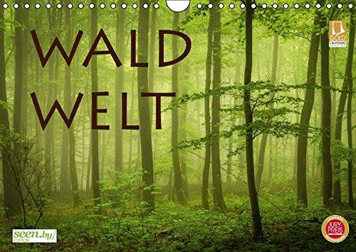 WaldWelt (Wandkalender 2016 DIN A4 quer): Waldszenen im Jahreswechsel (Monatskalender, 14 Seiten) (CALVENDO Natur)