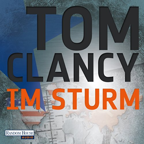 Im Sturm audiobook cover art
