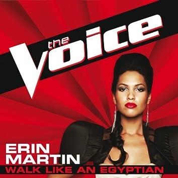 Walk Like An Egyptian (The Voice Performance)