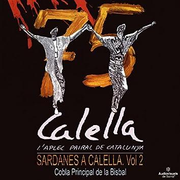 L'Aplec Pairal de Catalunya. Sardanes a Calella, Vol. II