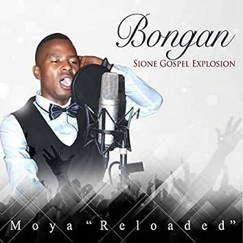 Moya (Reloaded)