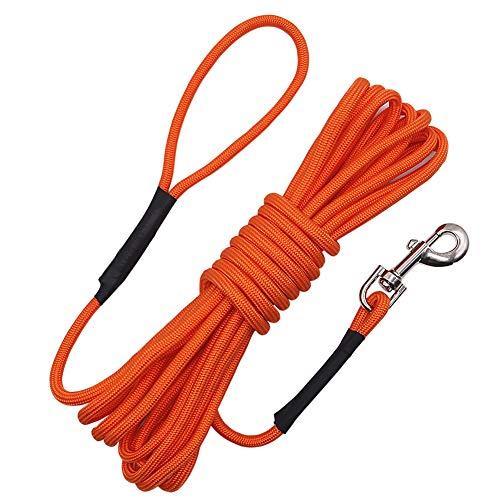 Vivifying Hundetrainingseil, 6 m, schwimmfähig, lang, mit Griff für Strand, See (orange)
