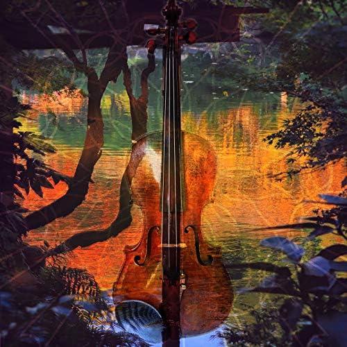 Violin Collective, Instrumental Zone & Zen Meditation Garden