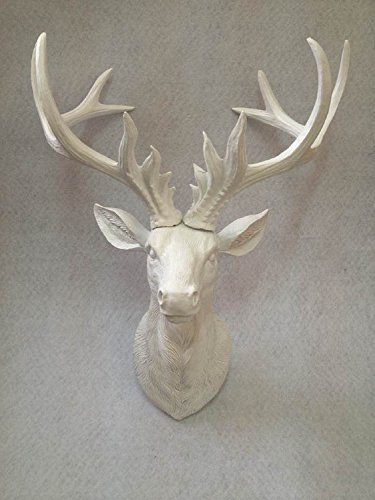 White Deer Antlers Wall Decor from m.media-amazon.com