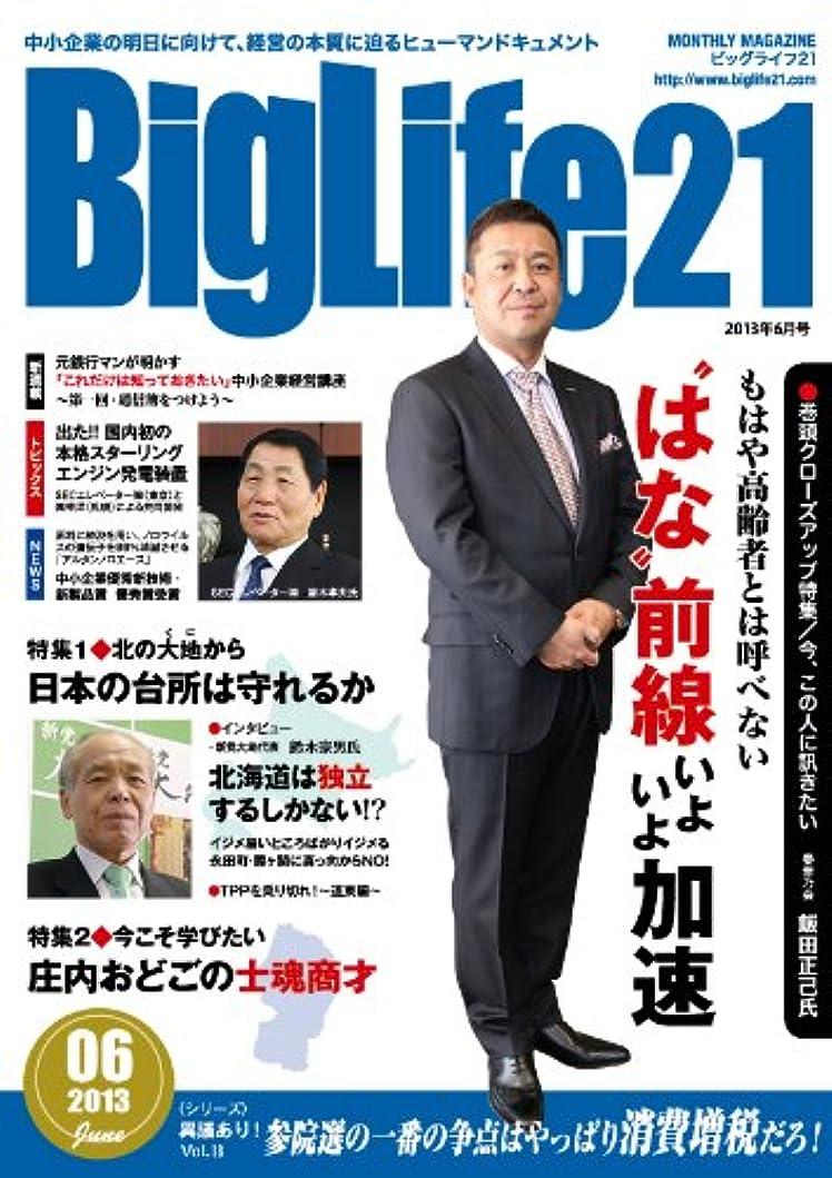第二欠陥まどろみのあるビッグライフ21 Big Life21 176号 2013年6月号 ビッグライフ21 Big Life21