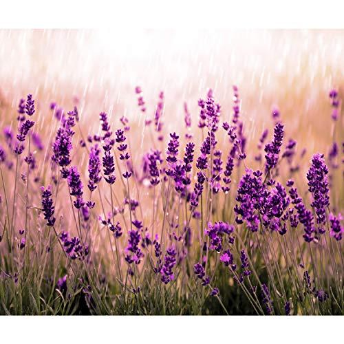 decomonkey Fototapete Blumen Lavendel 400x280 cm XXL Design Tapete Fototapeten Vlies Tapeten Vliestapete Wandtapete moderne Wand Schlafzimmer Wohnzimmer Natur