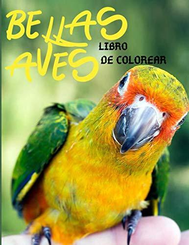 BELLAS AVES LIBRO DE COLOREAR: Libro para colorear aves para niños a...