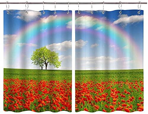 JISMUCI Cortinas para Cocina Paisaje Rural Primavera Campo de Amapolas Tierras de Cultivo Arco Iris Árboles bajo un Cielo despejado Imagen de Naturaleza Pastoral Cortinas de Ventana 140x100CM
