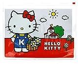 Hello Kitty Vintage cierre de cremallera cartera