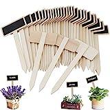 Étiquettes Potager, HICOO Mini Tableau en Bois Étiquettes pour Plantes pour Pot de Fleur Graine en Pot Herbes Légumes 30Pcs