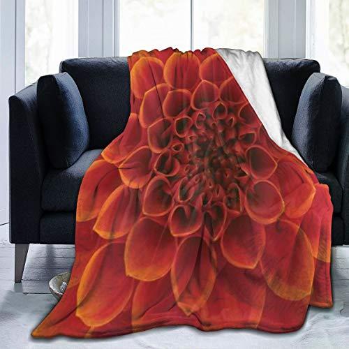 MUYIXUAN Soft Fleece Throw Blanket,Abstrait Fleur et pétales Fleur saisonnière Close up jardins,Home Hotel Sofá Cama Sofá Mantas para Parejas Niños Adultos,120x150cm