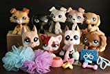 Ship from usa warehouse, usually takes about 3-5 business days you will receive it; lps Cat ans Dogs 9pcs 2452 363 67 577 1647 893 2291 325 909 with lps accessories lot, as picture shows; Collectable figures, best Christmas/ Birthday gift for kids; A...