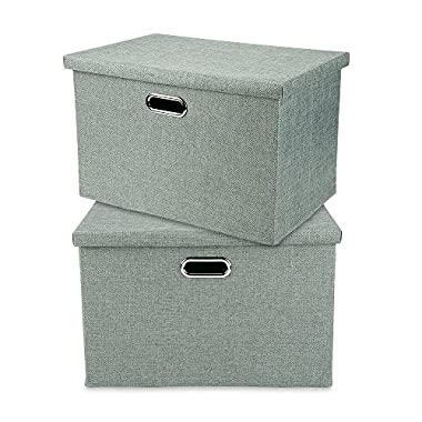 Storage Cubes Bins Large Foldable Baskets Containers with Removable Lid and Handles for Home Closet Bedroom Drawers Organizers, Foldable, Pistachio, Set of 2