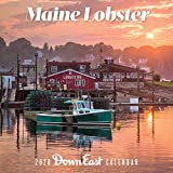 2020   Maine Lobster Wall Calender