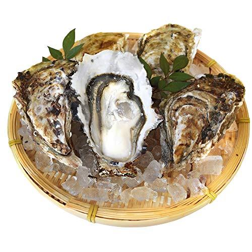 桃こまち 牡蠣 20個入 冷凍 殻付き 牡蠣 三重県 鳥羽産 加熱用 ( 発泡箱 入・牡蠣ナイフ・片手用軍手付き )海鮮 バーベキュー セット BBQ