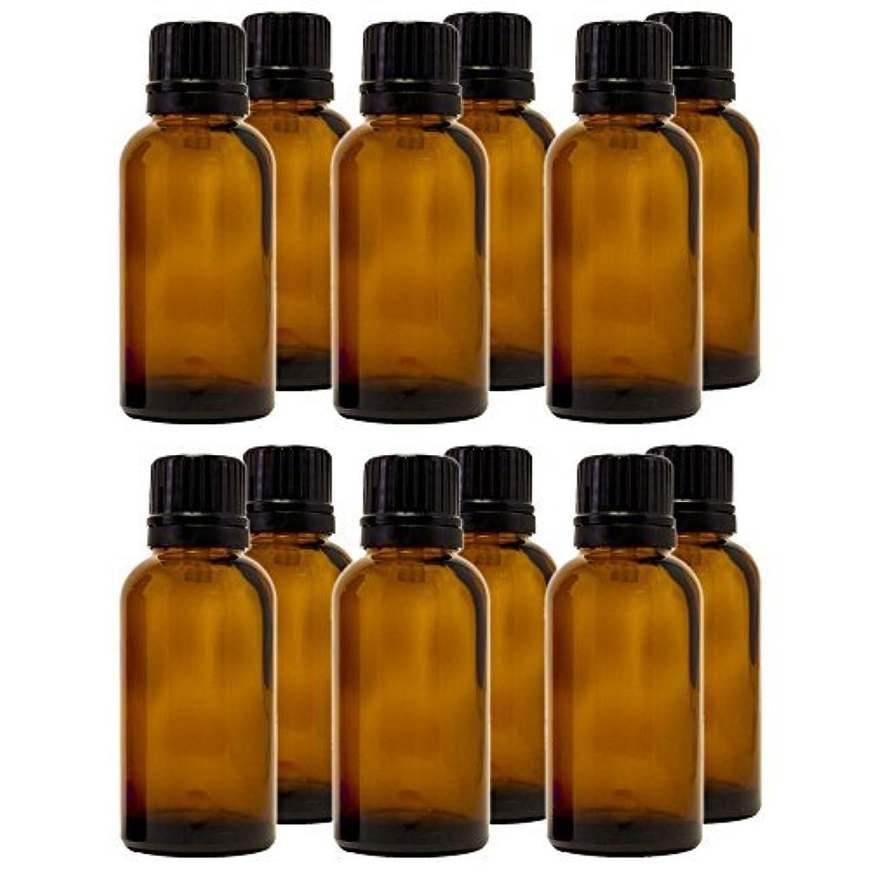 哀シネマ流暢30 ml (1 fl oz) Amber Glass Bottle with Euro Dropper (12 Pack) [並行輸入品]