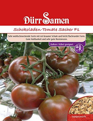 Dürr Samen 4248 Tomate Sacher F1 (Tomatensamen)