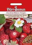 Dürr-Samen Monatserdbeeren Rügen