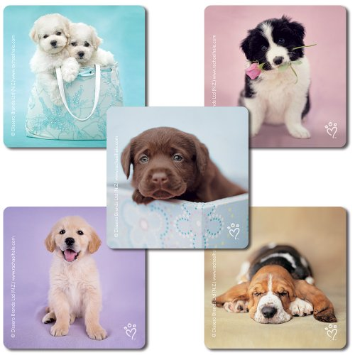 SmileMakers Rachael Hale Dogs Stickers - 100 Per Pack
