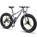 Bicicleta de Montaña de 26 ', para Hombre 30 Velocidades 4.0 Neumáticos Súper Anchos Bicicleta, Marco de Aluminio Liviano Suspensión Delantera Frenos de Disco Doble ( Color : Gris , Talla : 24-speed )