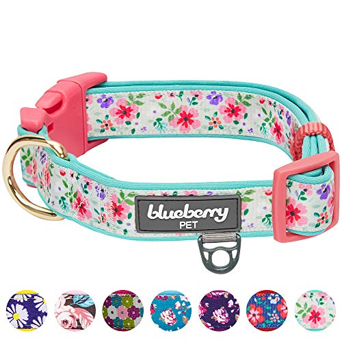 "Blueberry Pet 2020 New 7 Patterns Soft & Comfy Pretty Posies Spring Garden Green Padded Adjustable Dog Collar, Medium, Neck 14.5""-20"""