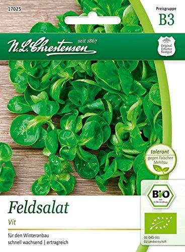Bio Feldsalat 'Vit' Saatgut Samen (für den Winteranbau)