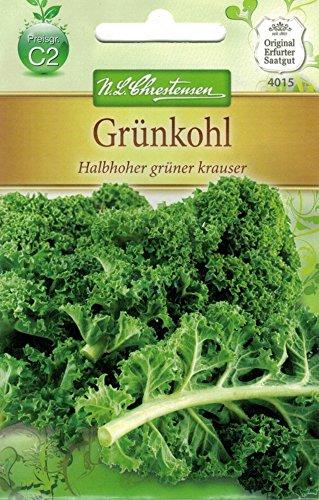 Chrestensen Grünkohl 'Halbhoher grüner krauser'