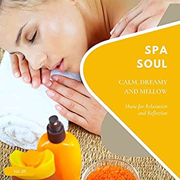 Spa Soul - Calm, Dreamy And Mellow Music For Relaxation And Reflextion, Vol. 05