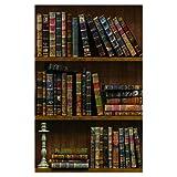 Yija Self-Adhesive Vintage Bookshelf Peel-Stick Wallpaper Backsplash Shelf Liner Removable Door Vinyl Flooring Stickers 17.7inch by 98inch