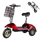 Z-HBMT Tricycle électrique Scooter Pliable,Batterie au Lithium 36V 10AH,350W Double Moteur avec LED...
