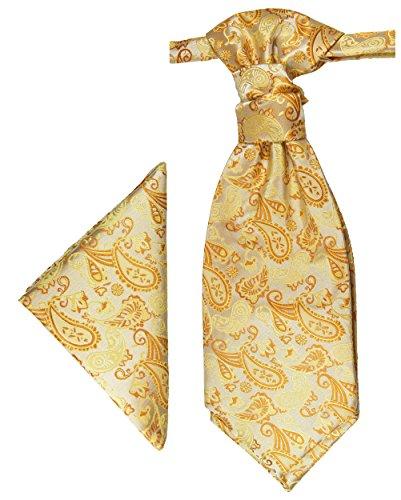 Paul Malone Plastron Set creme gold 2tlg Plastron mit Einstecktuch - Hochzeit Krawatte