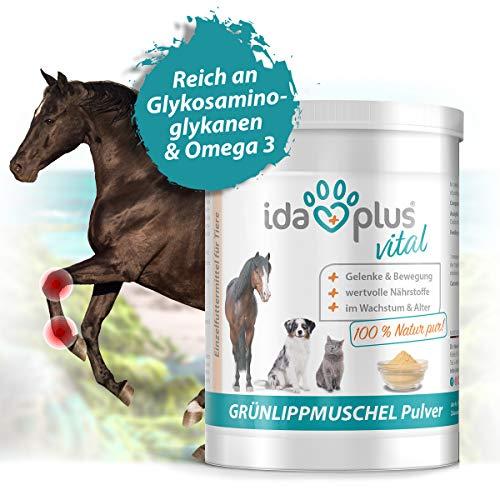 Ida Plus - 100% Grünlippmuschelpulver - 500 g - Grünlippmuschel zur Unterstützung der Gelenkfunktion für Hund, Katze & Pferd - ohne Zusätze - mit Glykosami-noglykanen, Omega 3, Calcium, Magnesium