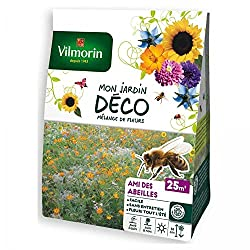 ruches en ville graines fleurs diversité