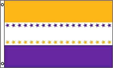 TrendyLuz Flags 19th Amendment Women's Rights Victory Suffrage Gender Equality Banner Flag 3x5 Feet