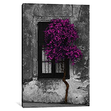 iCanvasART 1-Piece Tree in Front of Window Purple Pop Color Pop Canvas Print by Panoramic Images, 0.75 by 18 by 12-Inch